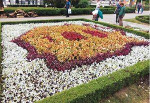 flori centenar1