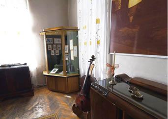 muzeul Paul Constantinescu1