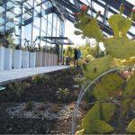 sera Gradina Botanica Bucov1